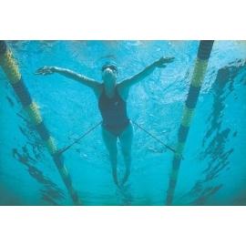 Strechcordz Stationary Swim Trainer