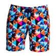 Boardshorts / Shorts Homme